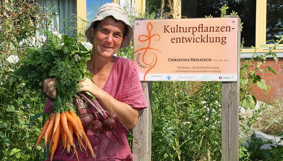 Samenfeste Gemüse Sorten : Bannerbild (2)